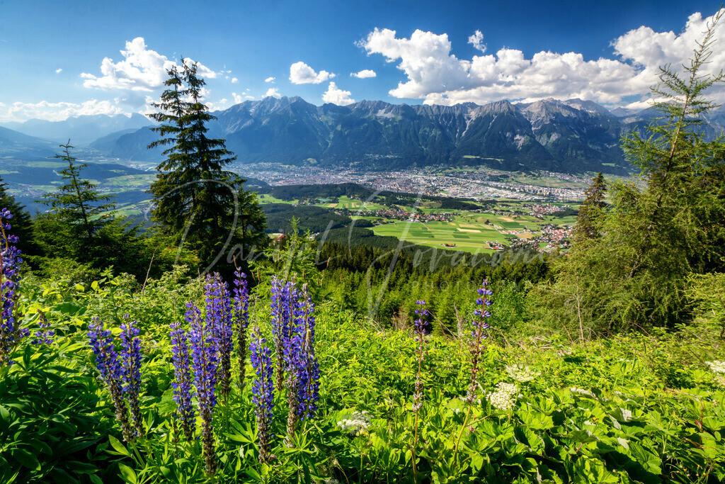 Patscherkofel | Blick vom Patscherkofel auf Innsbruck