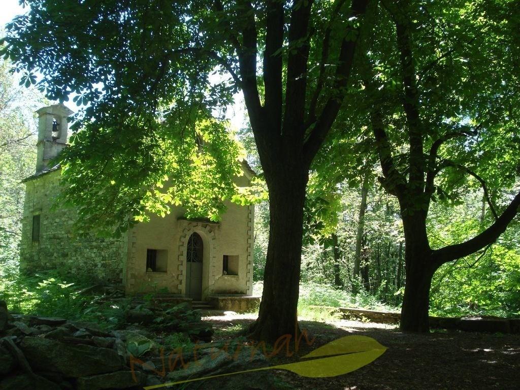 Waldkapelle | Tritt ein und gönne Dir stille Momente - oder bleib draußen und tu das gleiche in der Stille des Waldes..