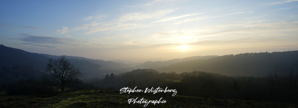 Sonnenuntergang Falkenstein | Panorama Naturschutzgebiet Falkenstein