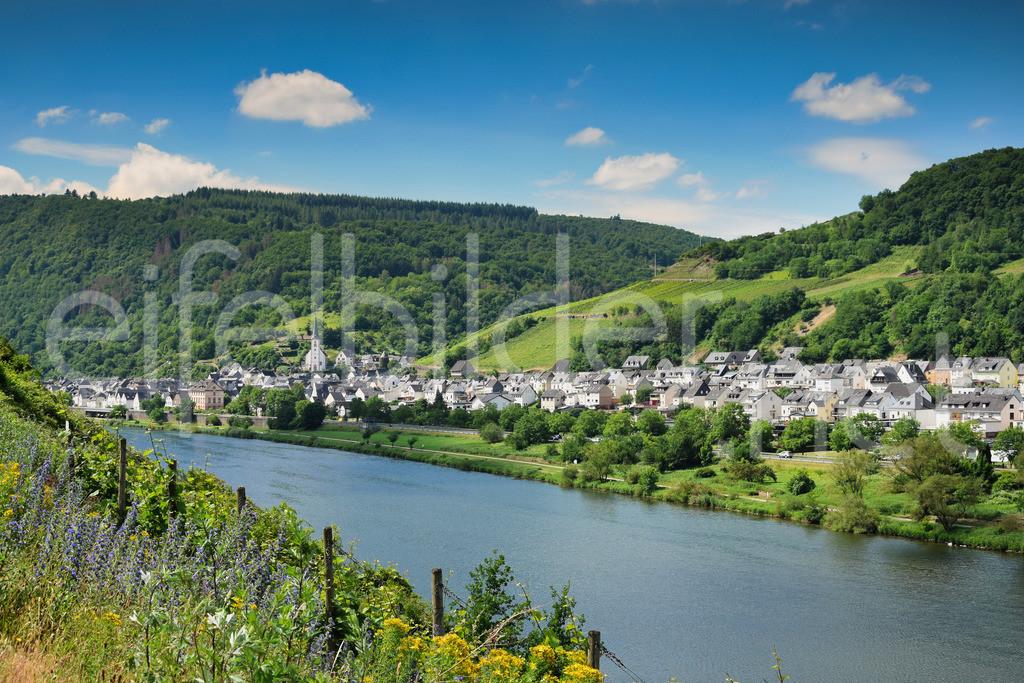 Mosel Landschaft | Blick über die Mosel auf den Weinbauort Briedel