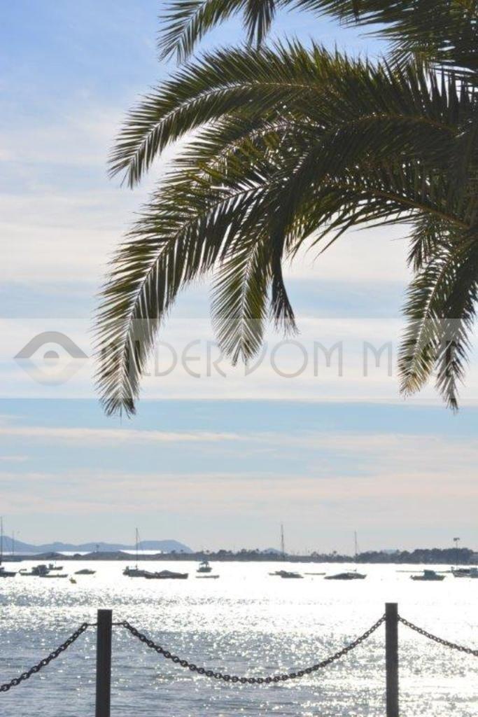 bilder vom Meer: Strandpromenade   San Pedro del Pinatar, Mar Menor