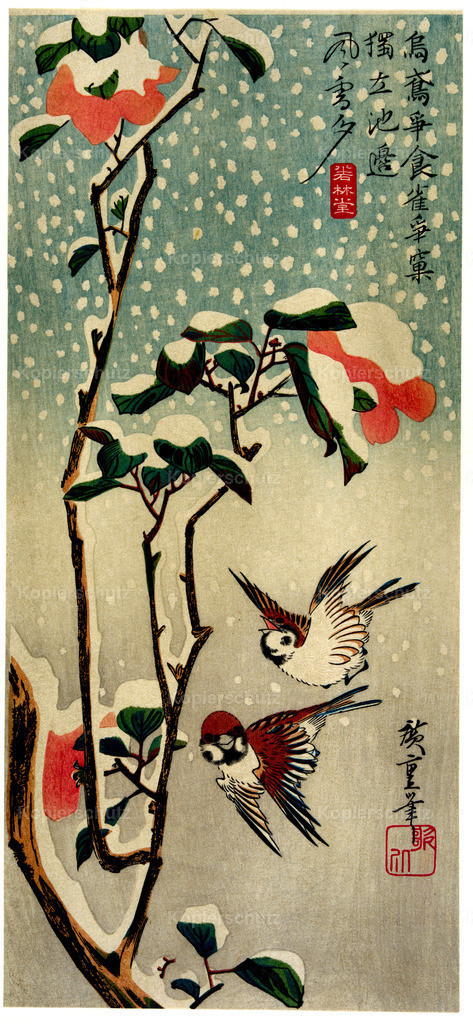 Sparrows-and-camellias-in-the-snow-1838 - Large Format