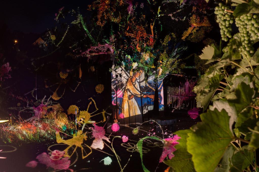 Bunter Abend 6 | Den Garten in ein Märchen verwandeln.Es bedarf nur  viele meiner Bilder, einen Photoapparat, 6 Projektoren, einen Kopf voll Ideen und einen Abend Zeit sie sichtbar zu machen. Diese Motive können sich auch zur Gestaltung von Postkarten, Einladungen oder Sprüchen eignen. - enjoy!