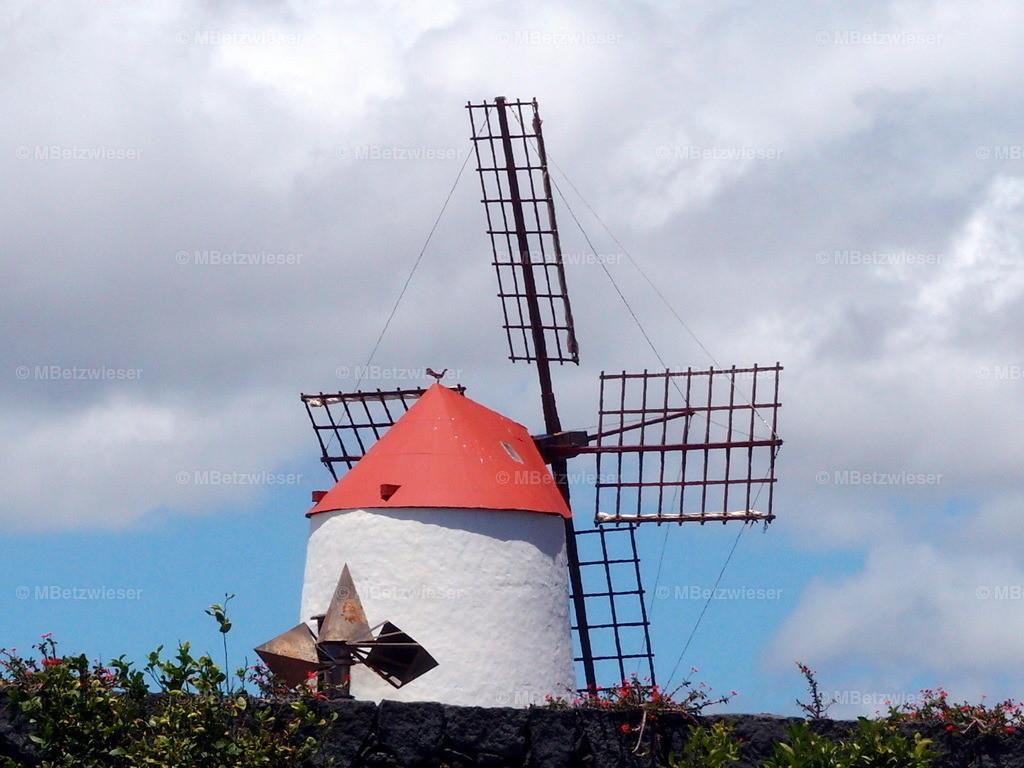 P5061164 | Windmühle im Kaktusgarten