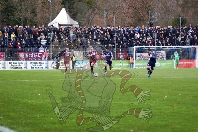 SV Babelsberg 03 vs. BFC Dynamo 023
