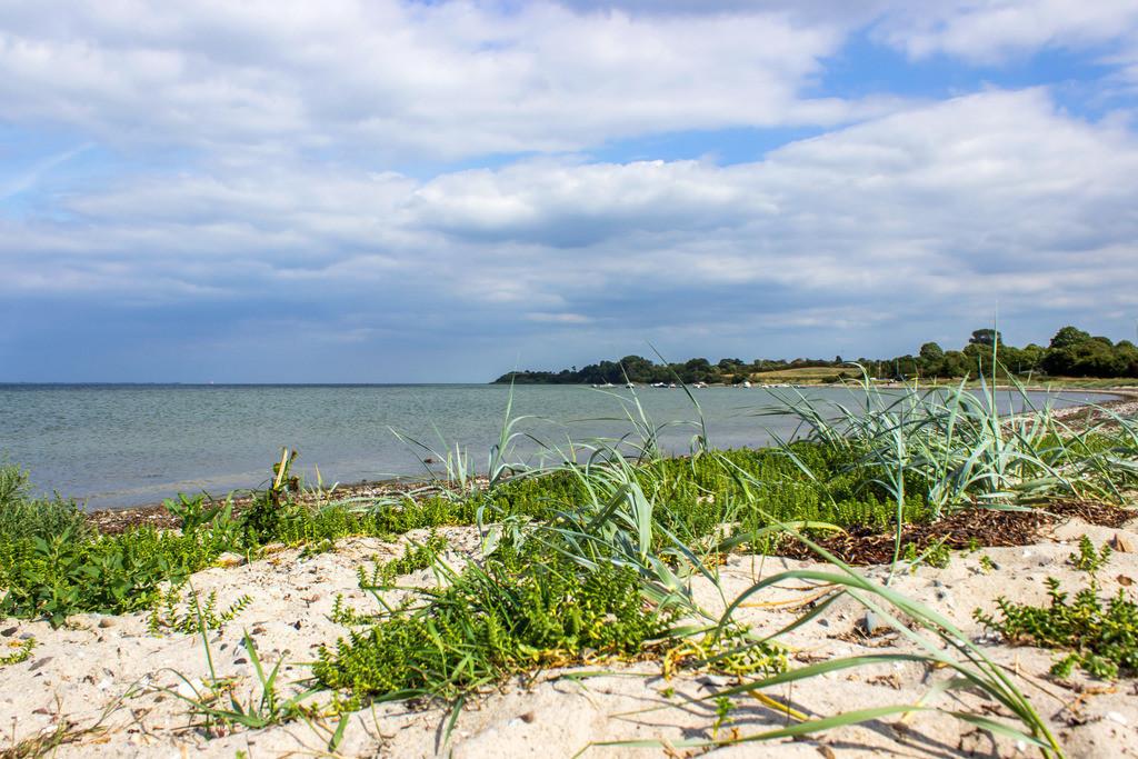 Strand in Habernis   Strand in Habernis im Sommer