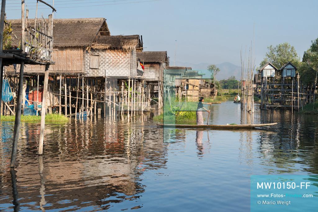 MW10150-FF   Myanmar   Inle-See   Nyaungshwe   Reportage: Ye Lin lebt auf dem Inle-See   Ye Lin's Dorf auf dem Inle-See. Hier ist jeder mit dem Boot unterwegs, sei es nur zum Nachbarn, zum schwimmenden Markt oder wie Ye Lin in die Schule. Der 8-jährige Ye Lin Yar Zar lebt mit seinen Eltern in einem Pfahlhaus auf dem Inle-See. Er gehört zur ethnischen Gruppe der Intha und beherrscht die einzigartige Einbeinrudertechnik, um zur Schule zukommen.  ** Feindaten bitte anfragen bei Mario Weigt Photography, info@asia-stories.com