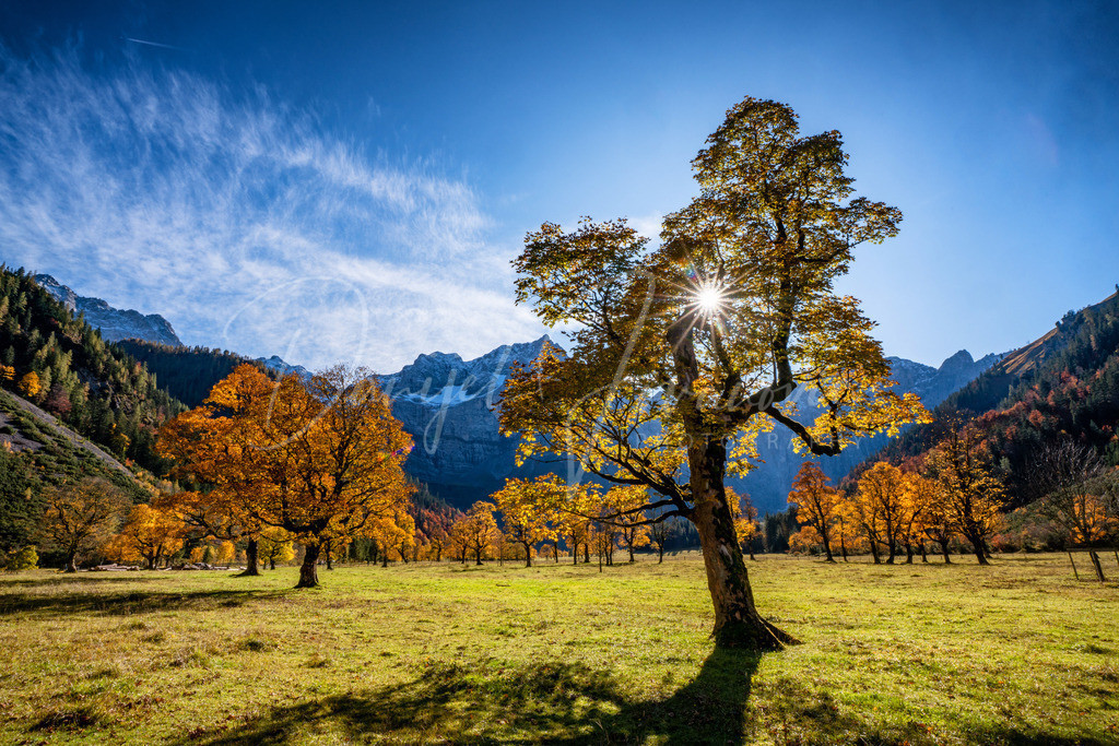 Großer Ahornboden | Herbst in der Eng