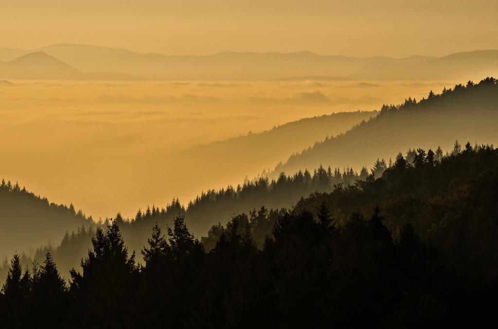 Schwarzwald bei Freiamt | Abendstimmung im mittleren Schwarzwald