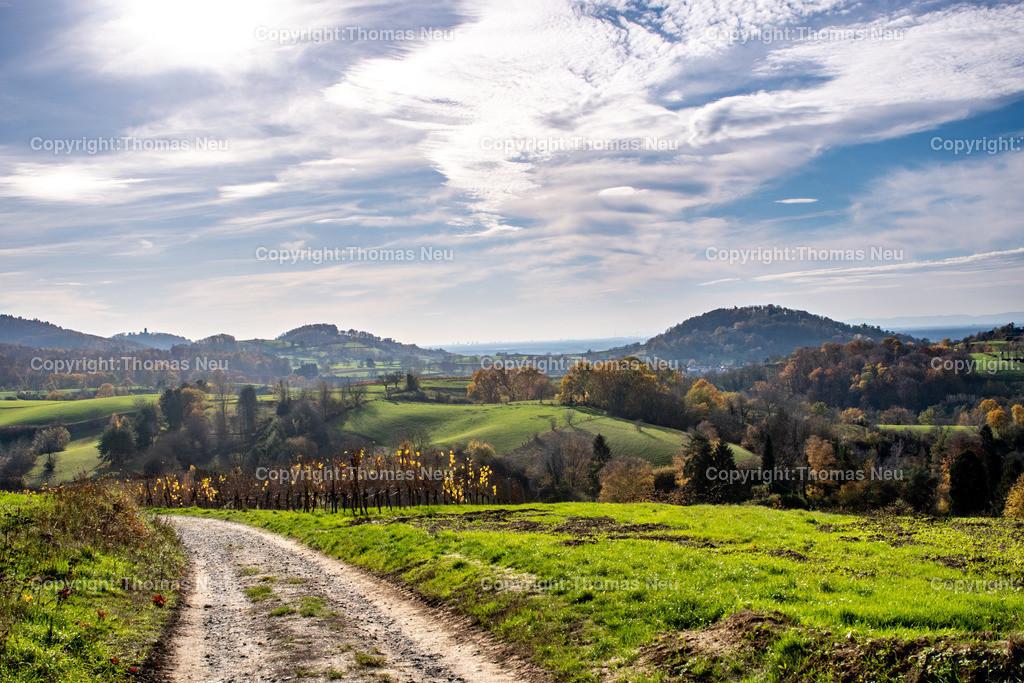 DSC_5355 | bbe,Bensheim, Herbststimmung oberhalb von Gronau, Herbst, Herbstfärbung, November, ,, Bild: Thomas Neu