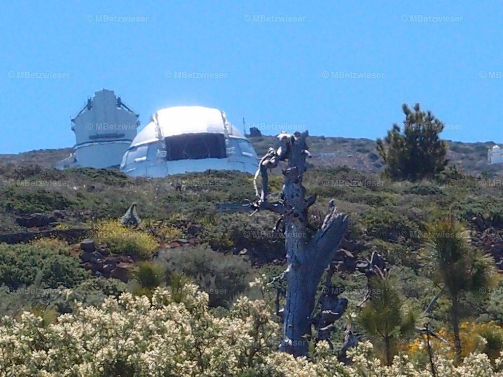 P4295304 | Grantecan und ital. Galileo Teleskop