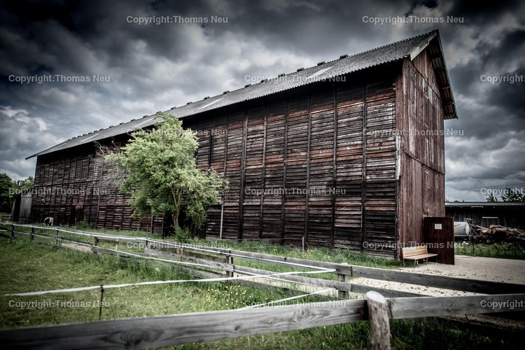 Tabakscheune | Lorsch, Baustellenfuehung, Tabakscheune,, Bild: Thomas Neu