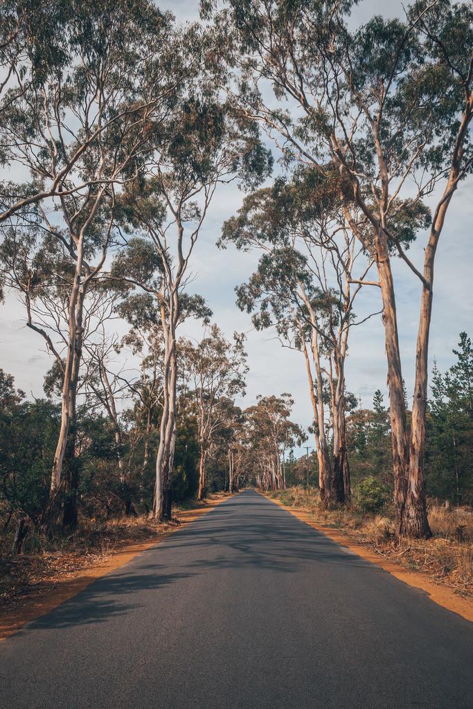 Tasmanien Landstraße Road Trip | Tasmanien Landstraße Road Trip