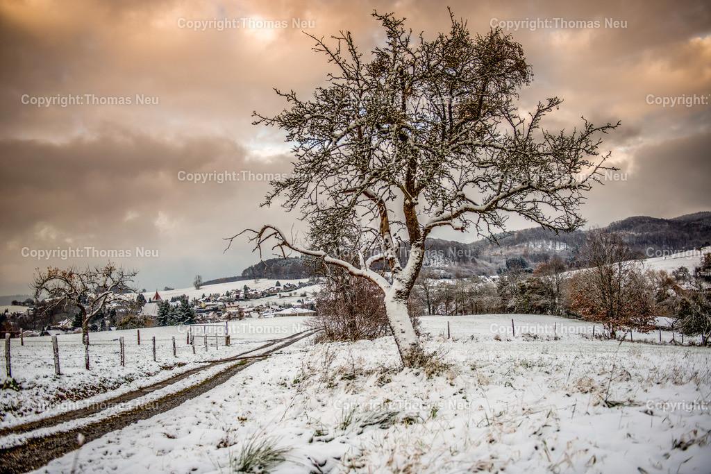 Gadernheim_Winter-DSC_5230 | Winter, Lautertal, zwischen Gadernheim und Breitenwiesen, Blick auf Gadernheim,  Schnee, ,, Bild: Thomas Neu