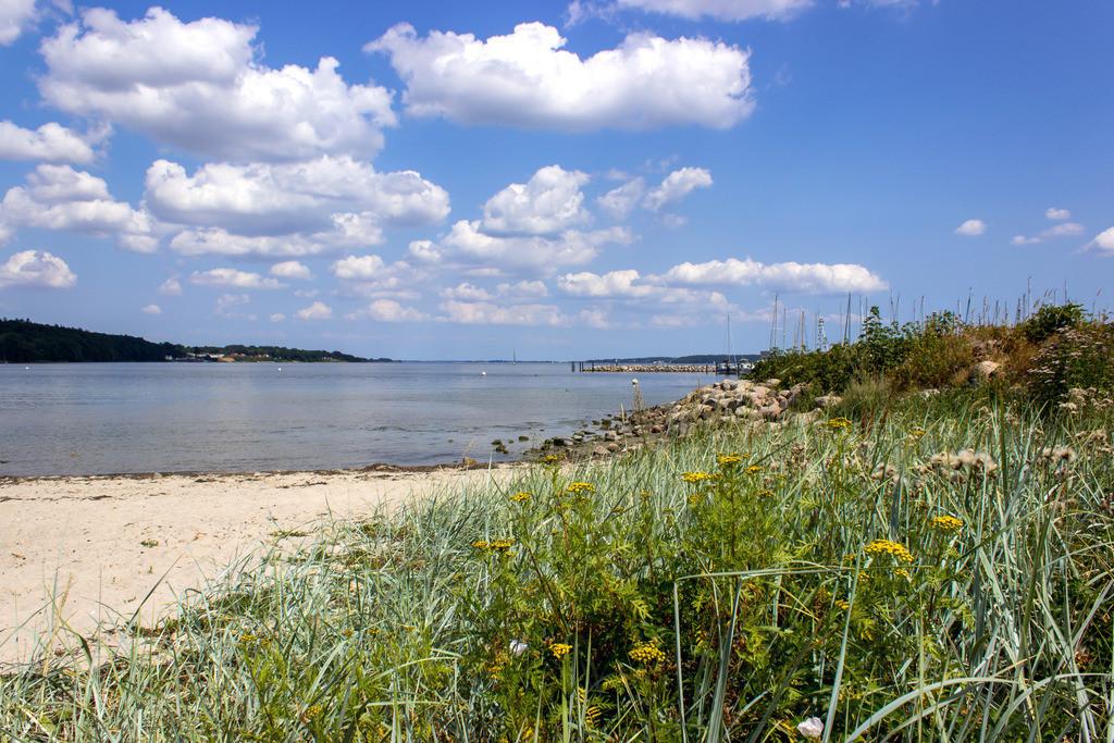 Strand in Wassersleben   Strand in Wassersleben bei Flensburg