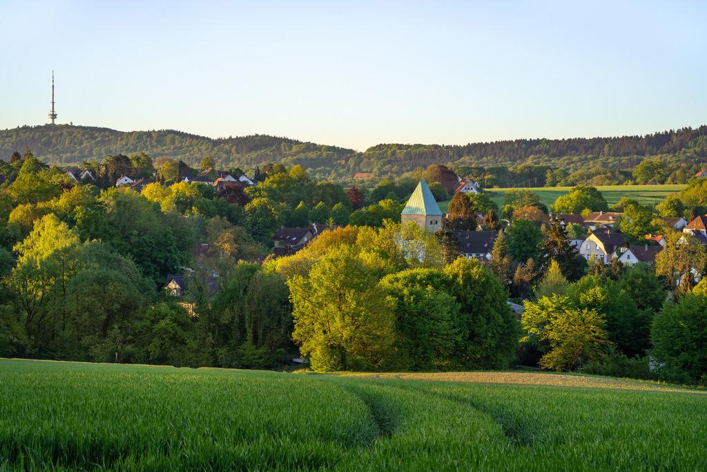 Kirchdornberg im Frühling | Frühling in Bielefeld-Kirchdornberg.
