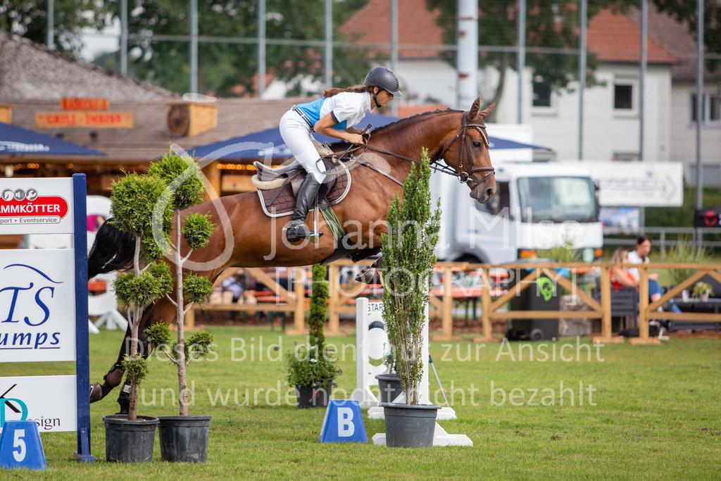 190719_LC_SprPf-A-037   Lopshorn Classics 2019 Springpferdeprüfung Kl. A** 4-5 jährige Pferde