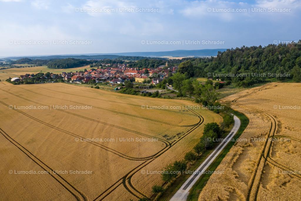 10049-50538 - Landschaft bei Börnecke