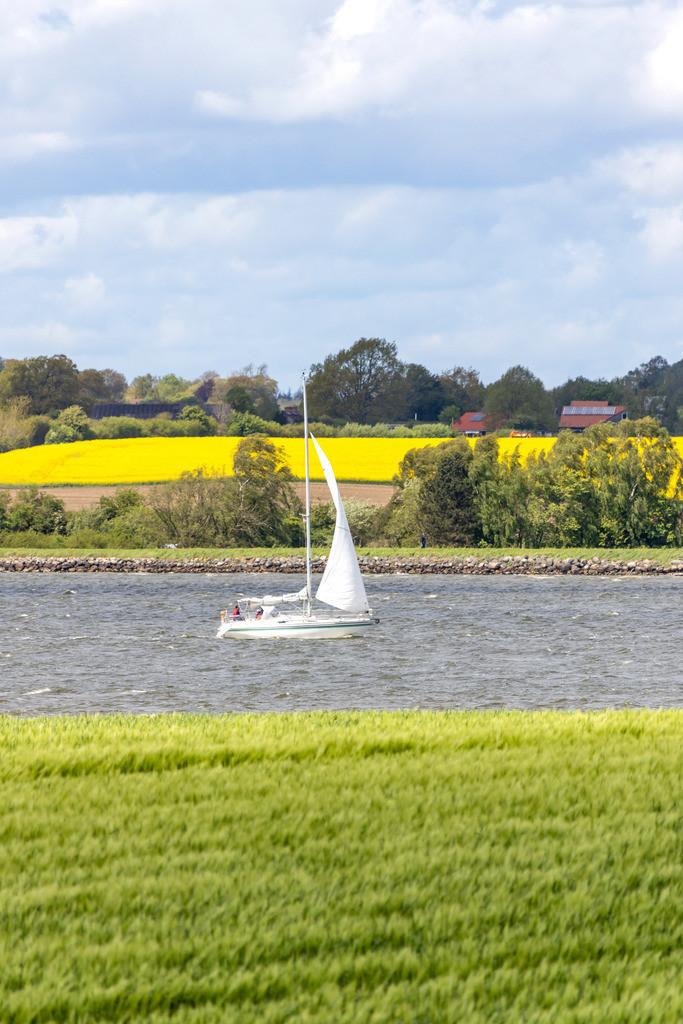 Winnemark an der Schlei | Segelboot auf der Schlei