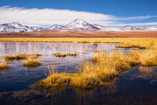 Atacama 008
