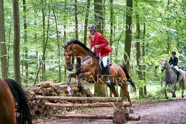 Jagd Knoop 216768_Marina Hewig