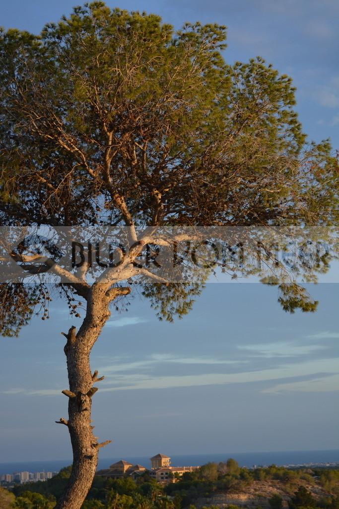 Foto Landschaft | Foto Landschaft Campoamor