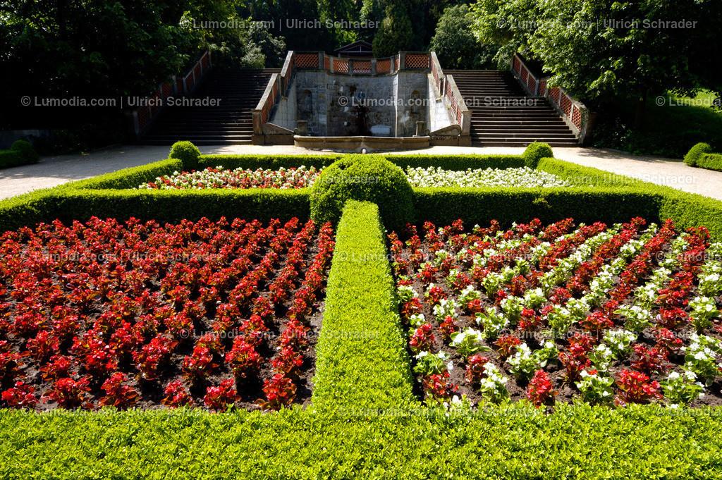 10049-10003 - Schlosspark Ballenstedt