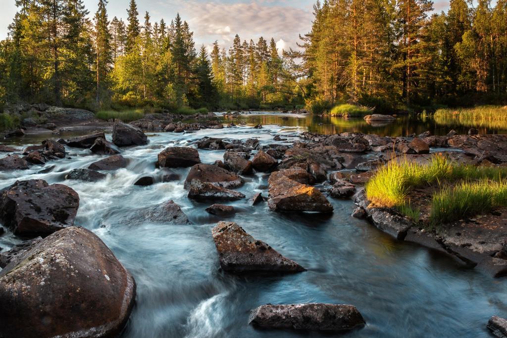 Wildbach in Schweden | Einer von unzähligen Bächen in Schweden.