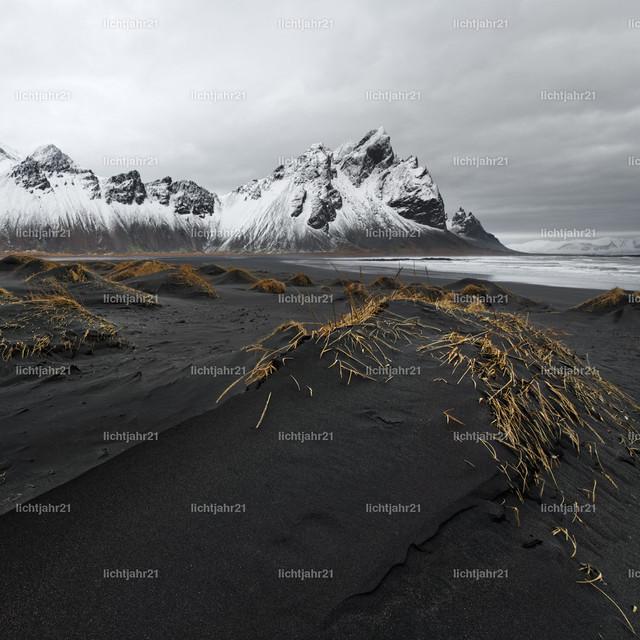 Bergkette vor schwarzen Sanddünen | Schneebedeckte Bergformation vor den Dünen eines schwarzen Lavasandstrandes, im Vordergrund eine große mit etwas Gras bewachsene Sanddüne, große Tiefenwirkung - Location: Island, Südküste
