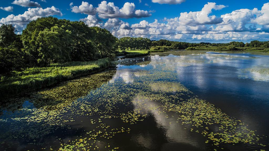 oberer Herrenteich Delta | Naturschutzgebiet oberer Herrenteich in Reinfeld, mit Wolkenhimmel