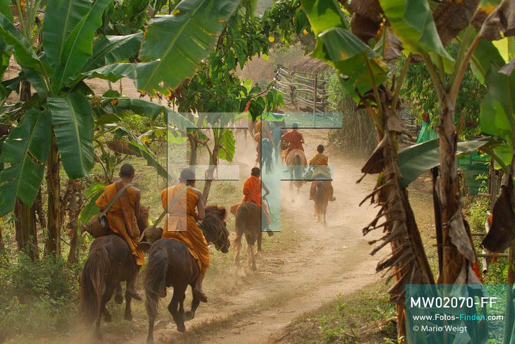 MW02070-FF | Thailand | Goldenes Dreieck | Reportage: Buddhas Ranch im Dschungel | Junge Mönche sammeln Almosen am Morgen  ** Feindaten bitte anfragen bei Mario Weigt Photography, info@asia-stories.com **