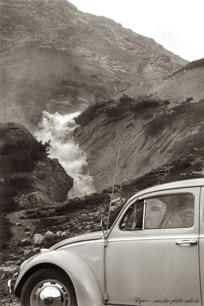 Käfer vor dem Wasserfall
