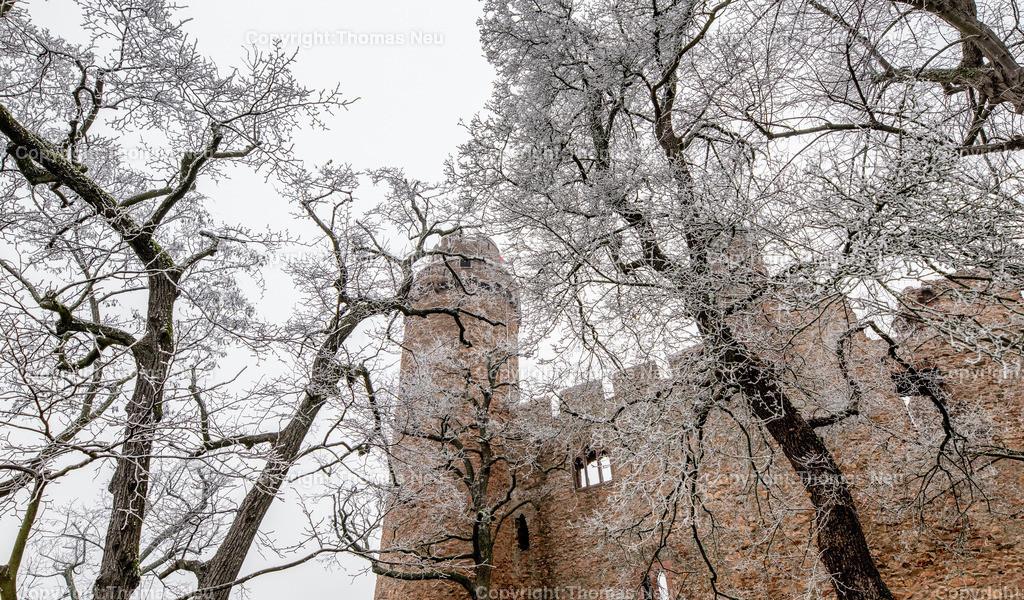 DSC_6629 | Bensheim-Auerbach, Schloss Auerbach, vereiste Äste verwandelten das Schloss und das ganze Schlossareal in eine Winterliche Märchenlandschaft, Schmuckbild, ,, Bild: Thomas Neu