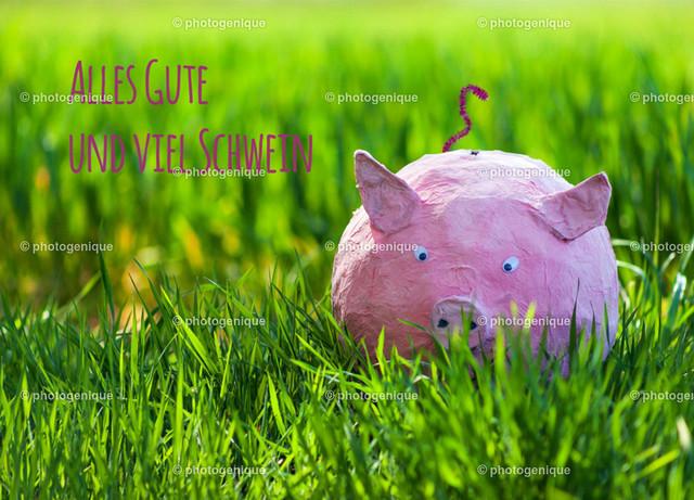 Alles Gute und viel Schwein | Postkarte Grußkarte mit Glücksschwein sitzt im Gras mit Text Alles Gute und viel Schwein