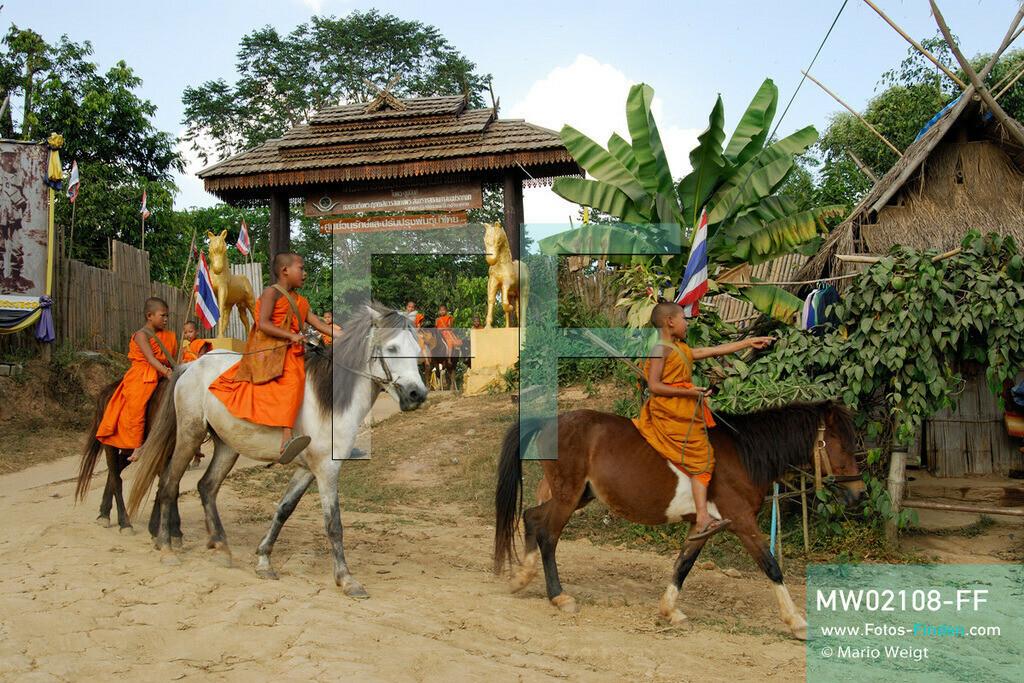 MW02108-FF   Thailand   Goldenes Dreieck   Reportage: Buddhas Ranch im Dschungel   Junge Mönche verlassen das Kloster und sammeln Almosen.  ** Feindaten bitte anfragen bei Mario Weigt Photography, info@asia-stories.com **