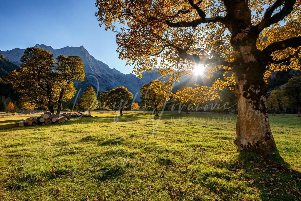 Großer Ahornboden | Herbst im Karwendelgebirge am großen Ahornboden