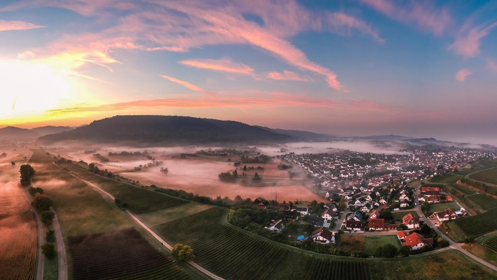 Niederschopfheim | Zauberhafter Herbstmorgen in den Reben bei Niederschopfheim