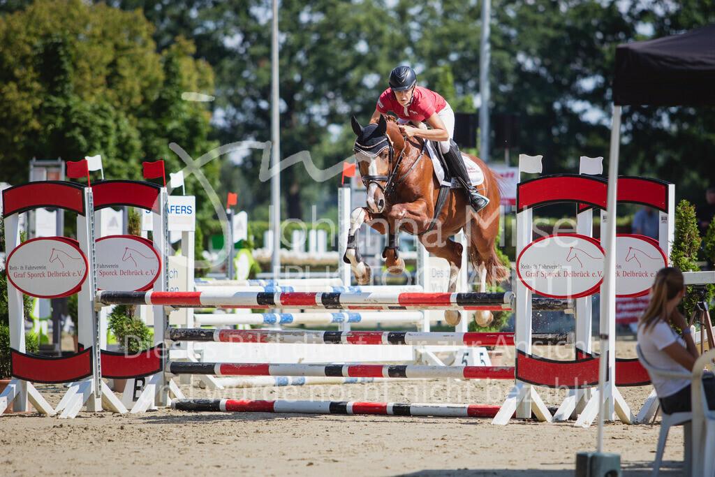 200819_Delbrück_Sprpf-A_2_1-249 | Delbrück Masters 2020 Springpferdeprüfung Kl. A** 4-6jährige Pferde