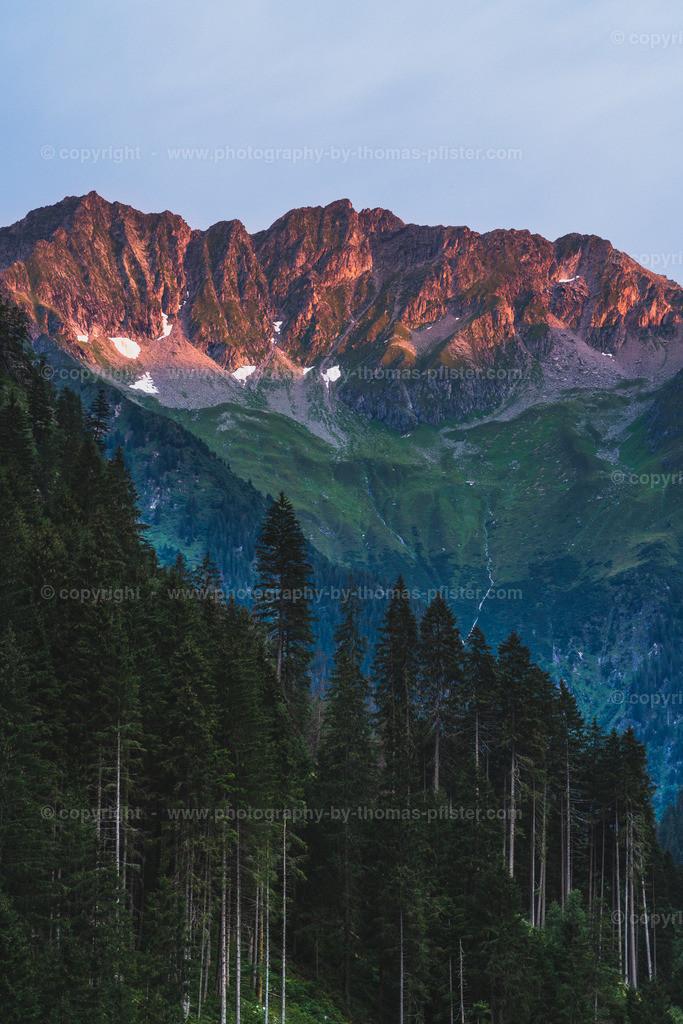Zillertaler Alpen Steinbockmarsch-1