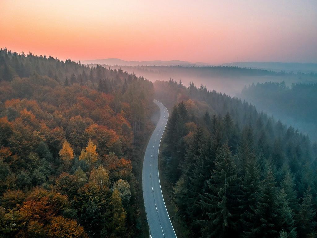 Herbstmorgen im Schwarzwald bei Ettenheim