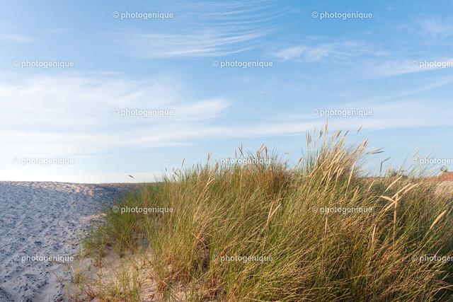 Strandblick über die Düne | Blick aus dem Dünengras in Richtung Strand bei Tageslicht vor einem wolkenverstrichenen Himmel