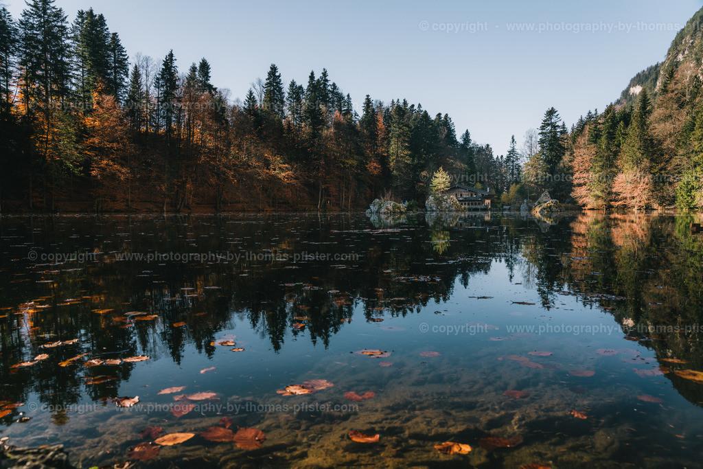 Herbst am Bergelsteiner See-1