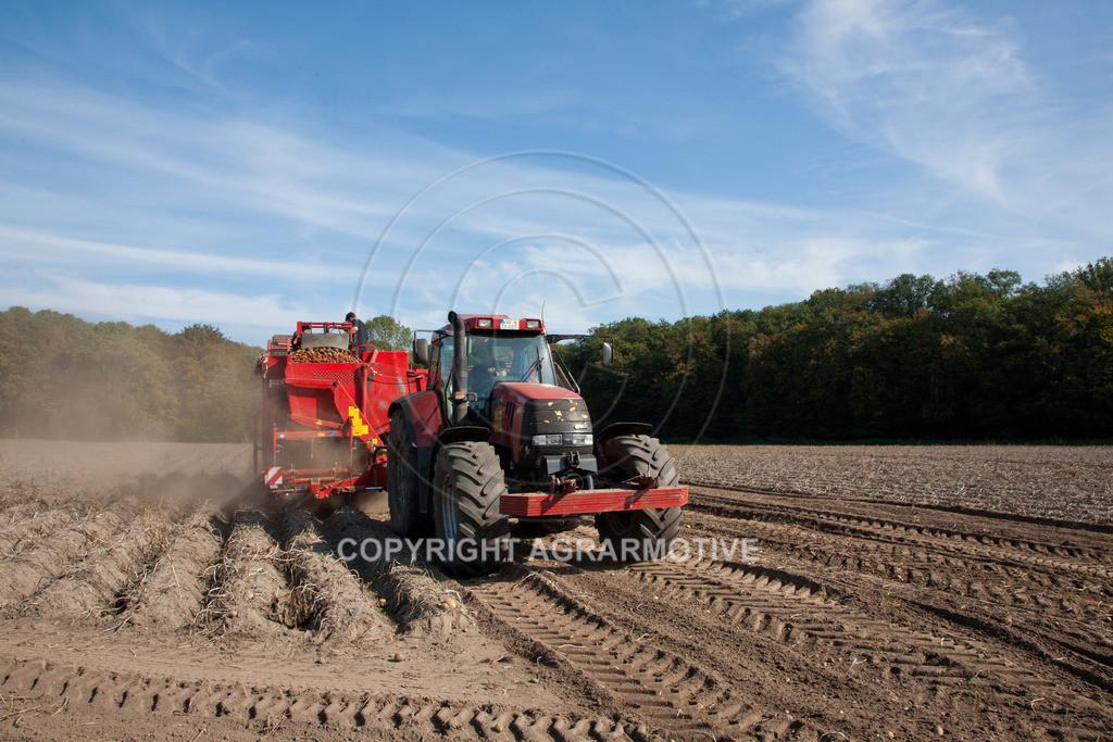 20110929-IMG_5849   Ernte auf einem Kartoffelfeld - AGRARBILDER