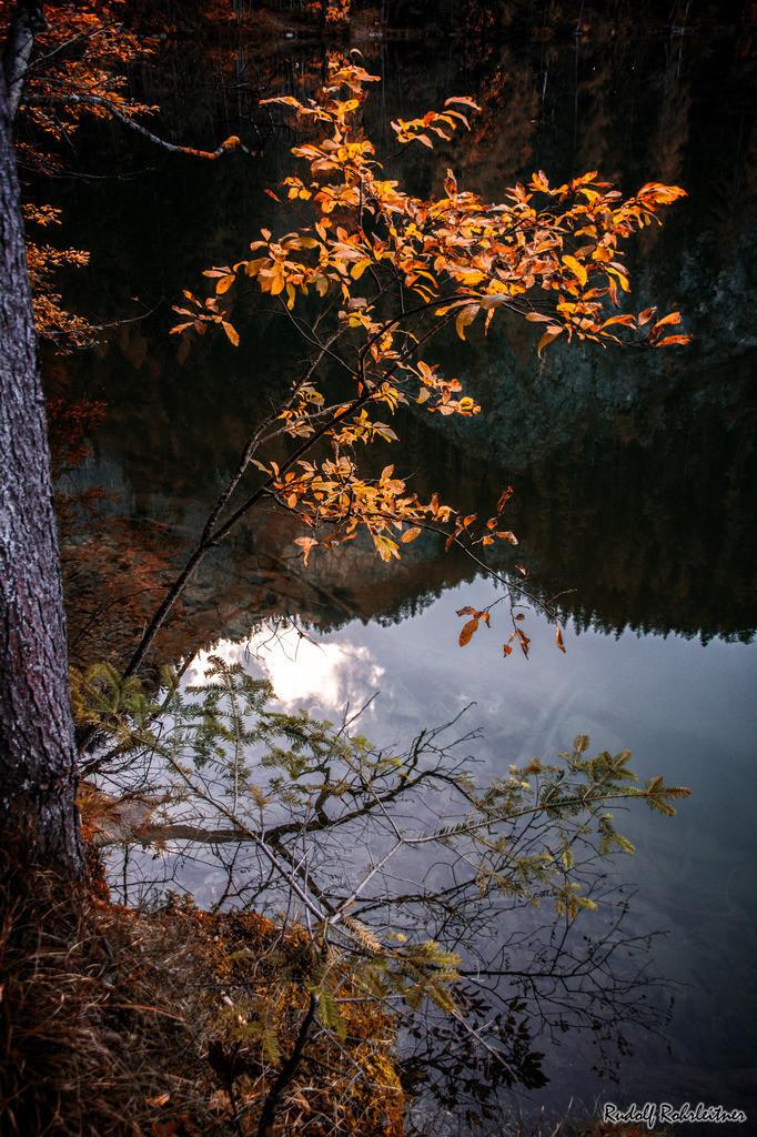 Herbsttraum | Gleinkersee