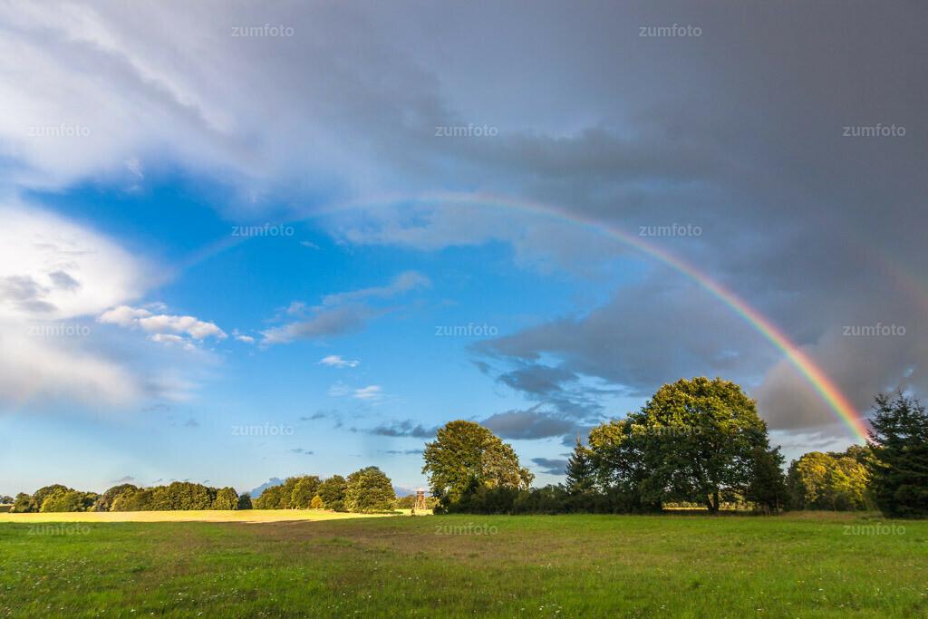 0-100828-8678   --Dateigröße 3888 x 2592 Pixel-- Regenbogen über Wiese und Waldrand