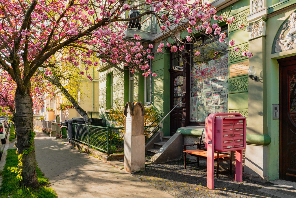 Frühling in der Pestalozzistraße
