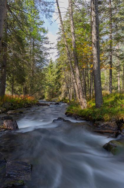 Flusslauf | Flusslauf bei Antholz kurz vorm Antholzer See
