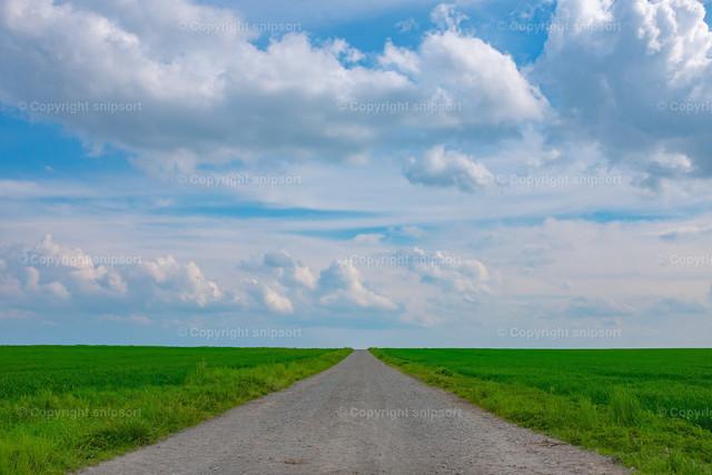 Ein Weg zwischen zwei Feldern | Ein leicht aufsteigender Feldweg zwischen zwei Feldern, der bis zum Horizont führt.