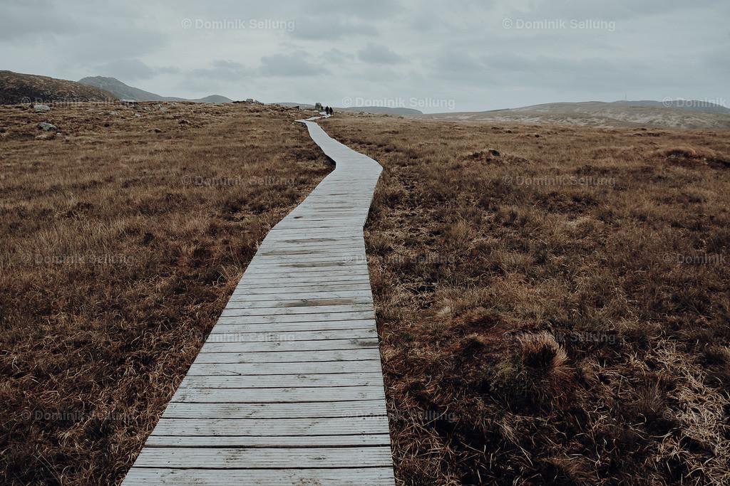 Thurles   Holzsteg der in die Weite mündet