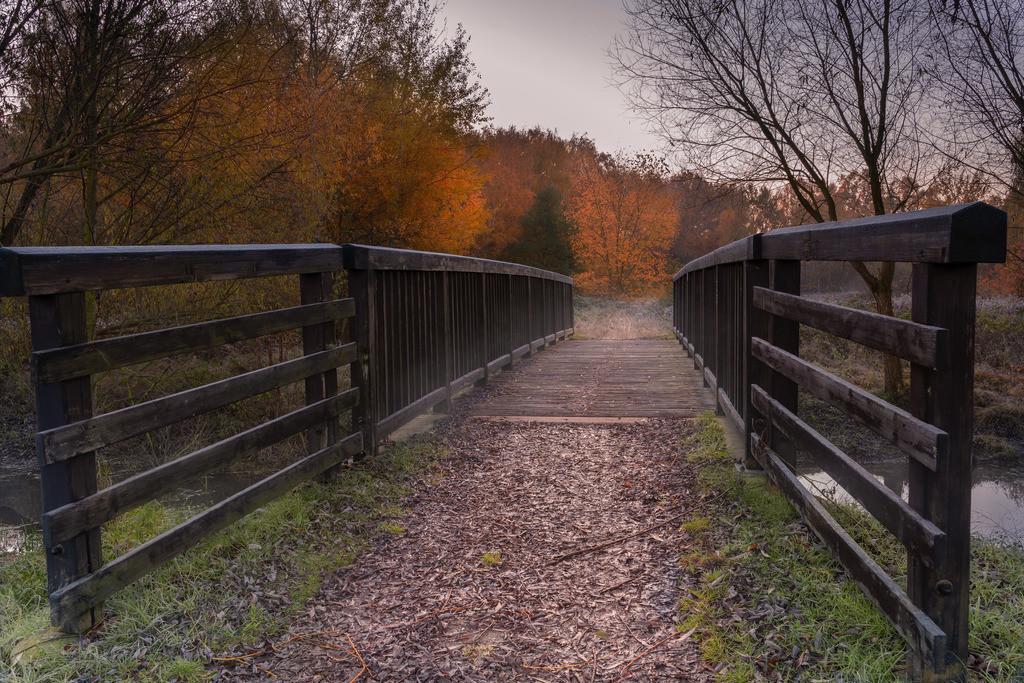 Herbstmorgen auf der Brücke